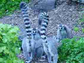 I am out with my best friends. We are having fun.