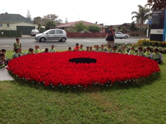 Black for the centre and red for the petals,
