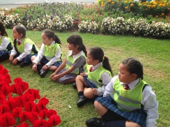 Rooms 2 and 2a walked to Burnside park to see the poppy display.