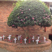 Poppies and crosses to remind us about the war.
