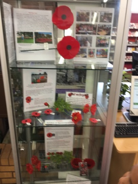 The background to 'The Poppy Project'