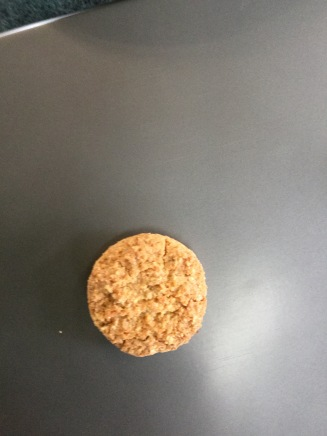An Anzac Biscuit