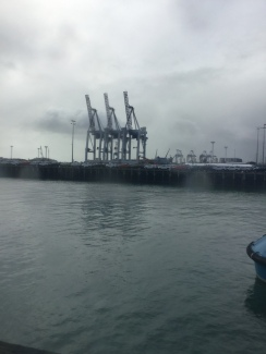 Here are the container cranes at the container terminal