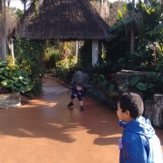 Exploring the Children's Garden