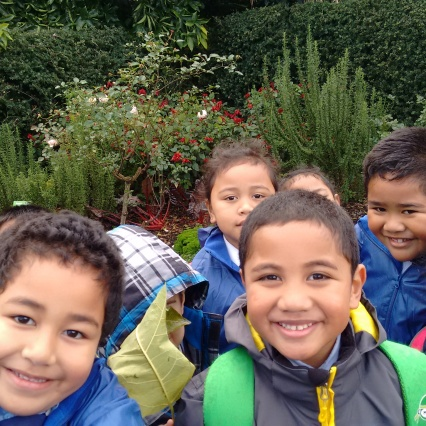 Looking at the vegetables growing in the Edible Garden