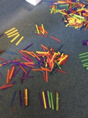 Look at all the sticks ready to count!