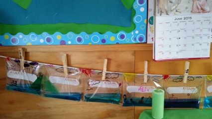 Our individual water cycles