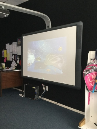 The ActivBoard photos