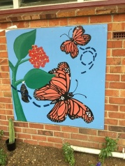 Our monarch butterfly murals