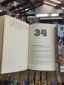 A chapter book