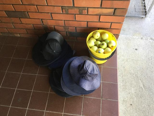Our hats and fruit
