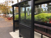 The bus stop shelters you as you wait