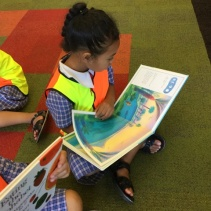 Reading a picture book