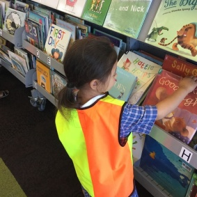 Choosing another book